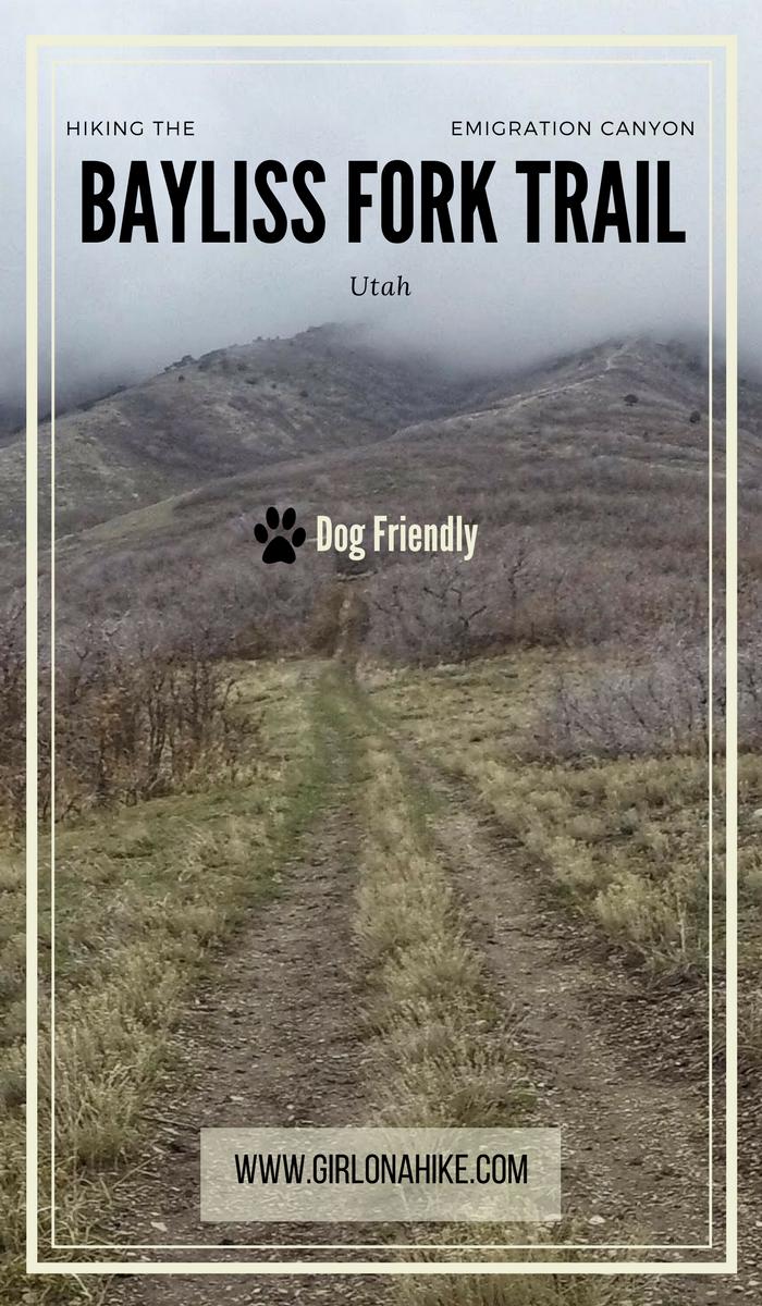 Hike the Bayliss Fork Trail, Emigration Canyon