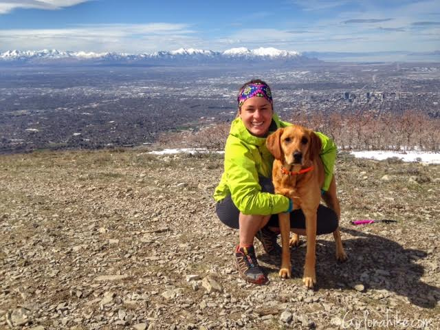 Hiking to Mt. Wire, Utah, Hiking in Utah with Dogs, Trail Guide to Mount Wire