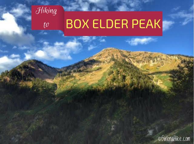 Top 10 Peaks to Bag in Salt Lake City, Box Elder Peak