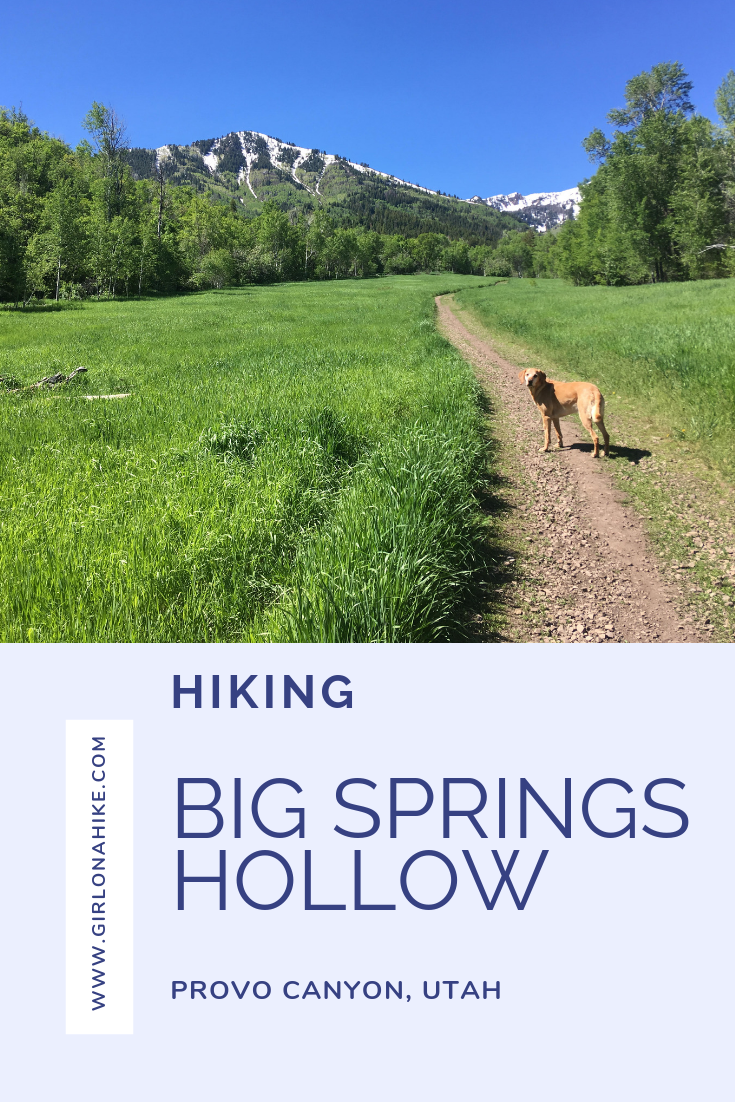 Hiking the Big Springs Hollow Trail
