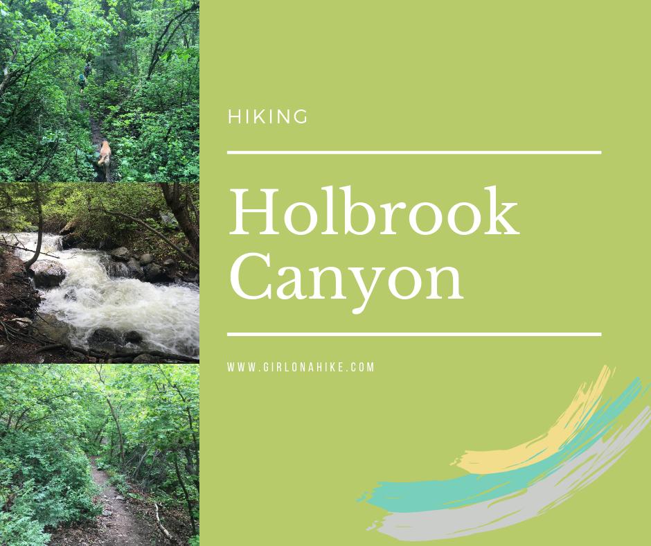 Hiking Holbrook Canyon