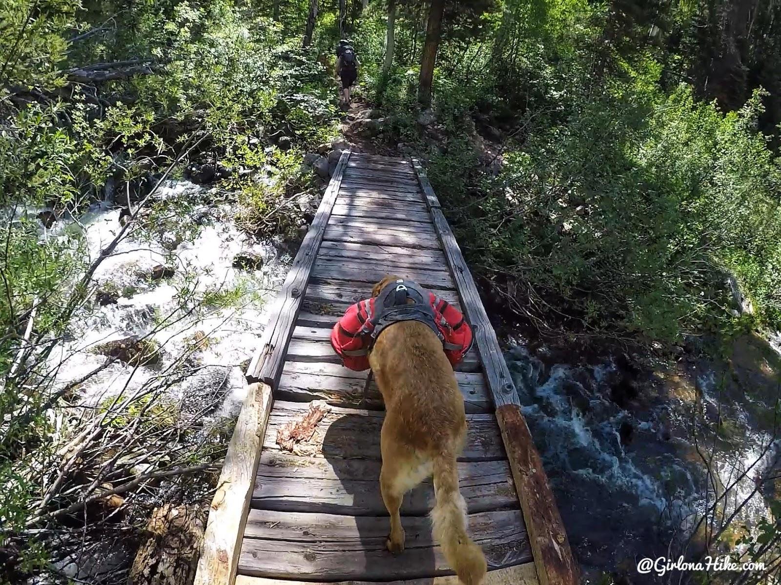 Backpacking the Yellow Pine Trail, Uintas