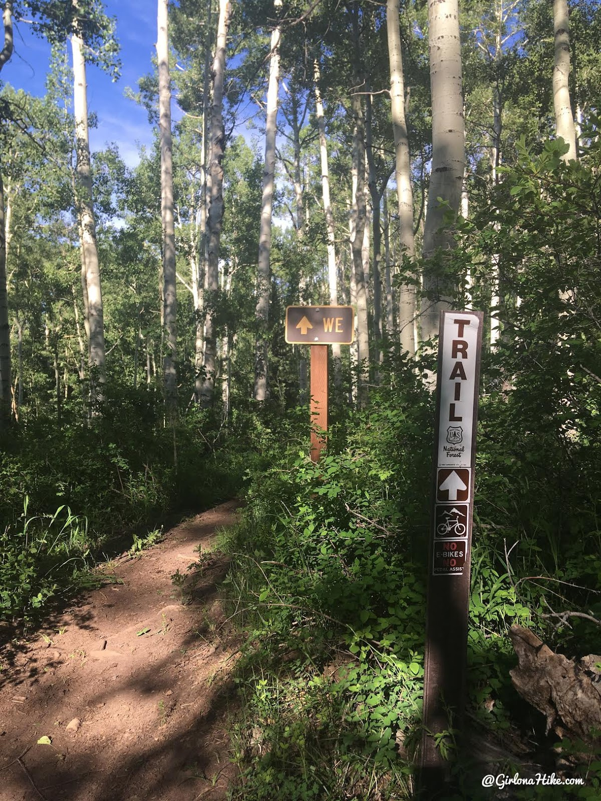 Hiking to Mann's Peak, LaSal Mountains, Hiking in Moab, Utah