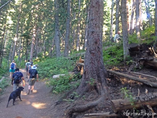 Hiking to Dog Lake, Hiking in Utah with Dogs, Millcreek Canyon