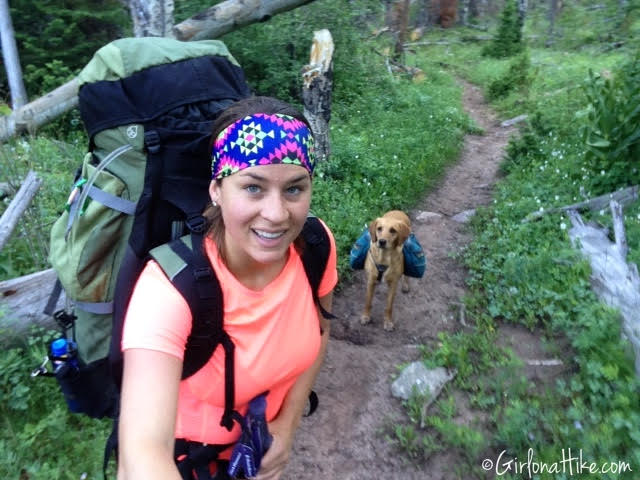 Backpacking to Amethyst Lake, Uintas, Hiking in Utah with Dogs