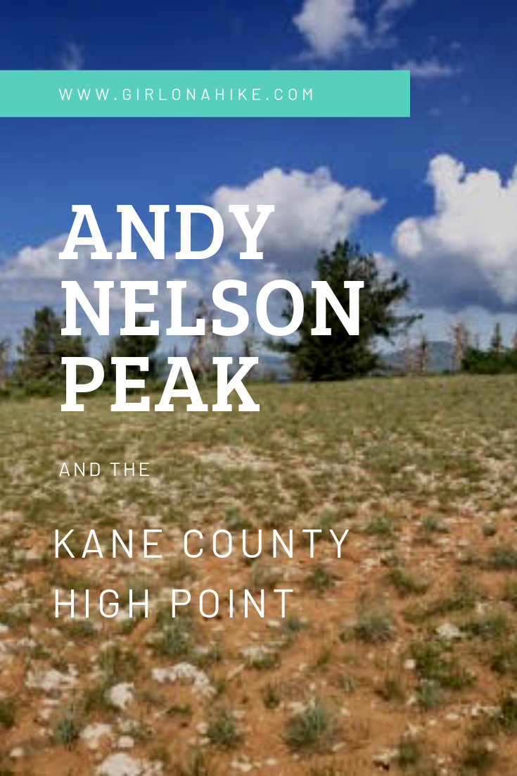 Hiking to Andy Nelson Peak & Kane County High Point