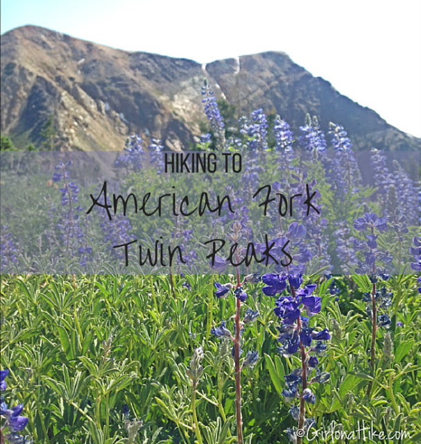 Hiking American Fork Twin Peaks