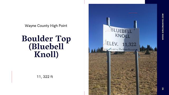 Boulder Top (Bluebell Knoll), Wayne County High Point