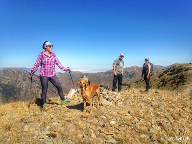 Hiking to Flat Top Mountain, Oquirrh Mountains