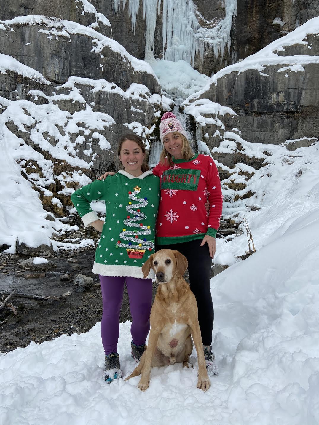Hiking to Stewart Falls, American Fork Canyon, Sundance Ski Resort, Hiking in Utah with Dogs