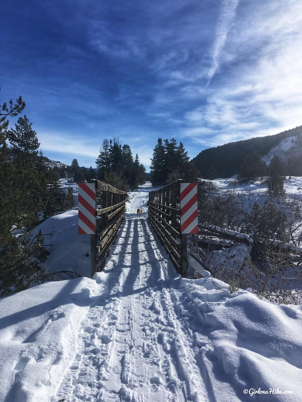 Cross Country Skiing in the Uintas, Beaver XC Ski Trail