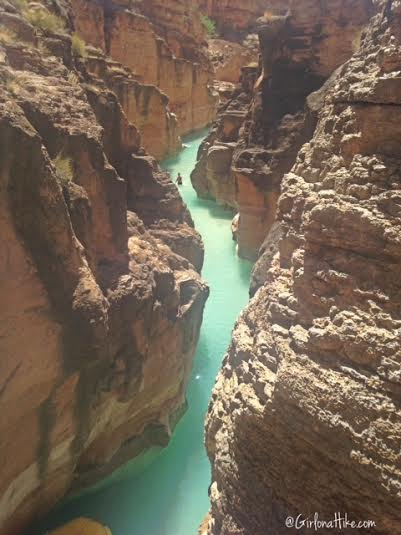 Hiking from Mooney Falls to the Colorado River! Colorado Confluence