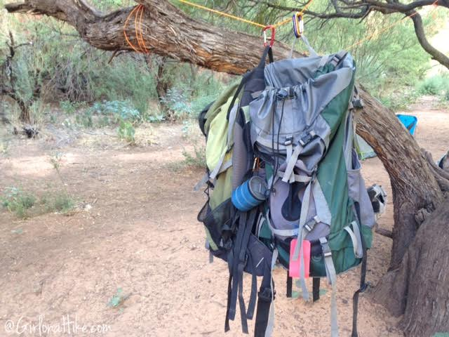 Hiking to Havasu Falls, Arizona