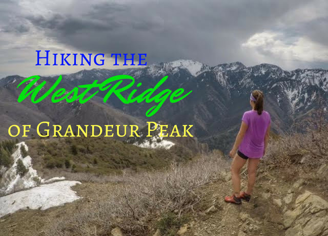 Hiking the West Ridge of Grandeur Peak The 7 Best Trails in Millcreek Canyon, Hiking in Utah with Dogs