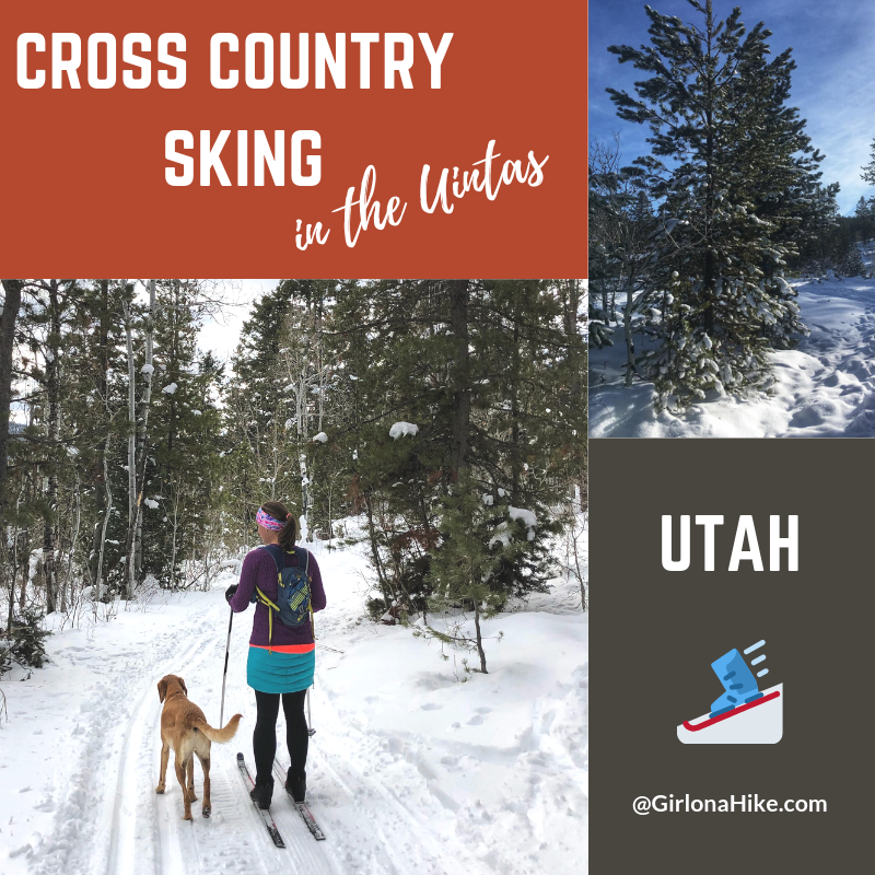 Cross Country Skiing in the Uintas