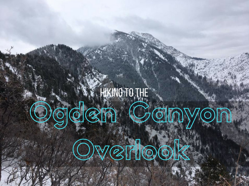 Hiking to the Ogden Canyon Overlook, Hiking in Utah with Dogs, Hiking near Snowbasin Ski Resort, Hiking in Ogden, Utah