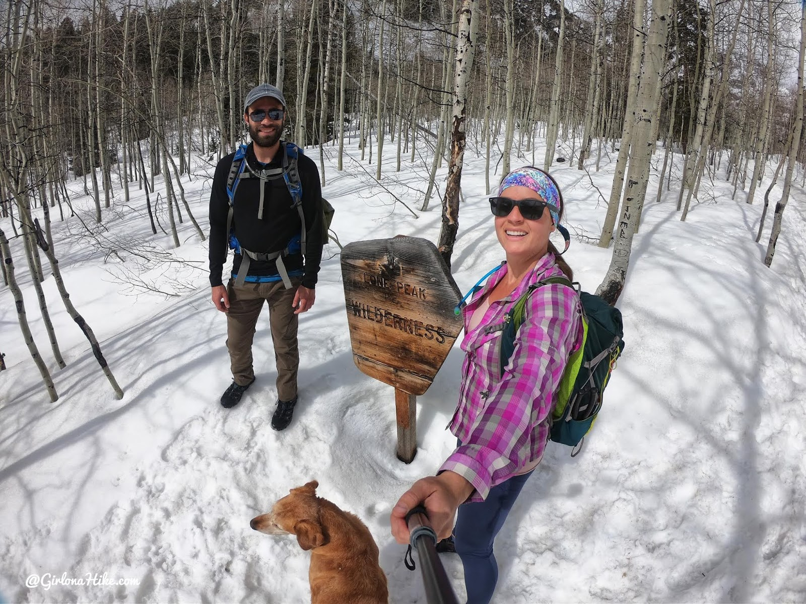 Hiking to Silver Lake and Silver Glance Lake, American Fork Canyon, Utah, Hiking in Utah with Dogs