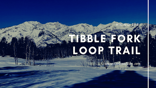 Hike the Tibble Fork Loop Trail, AF Canyon