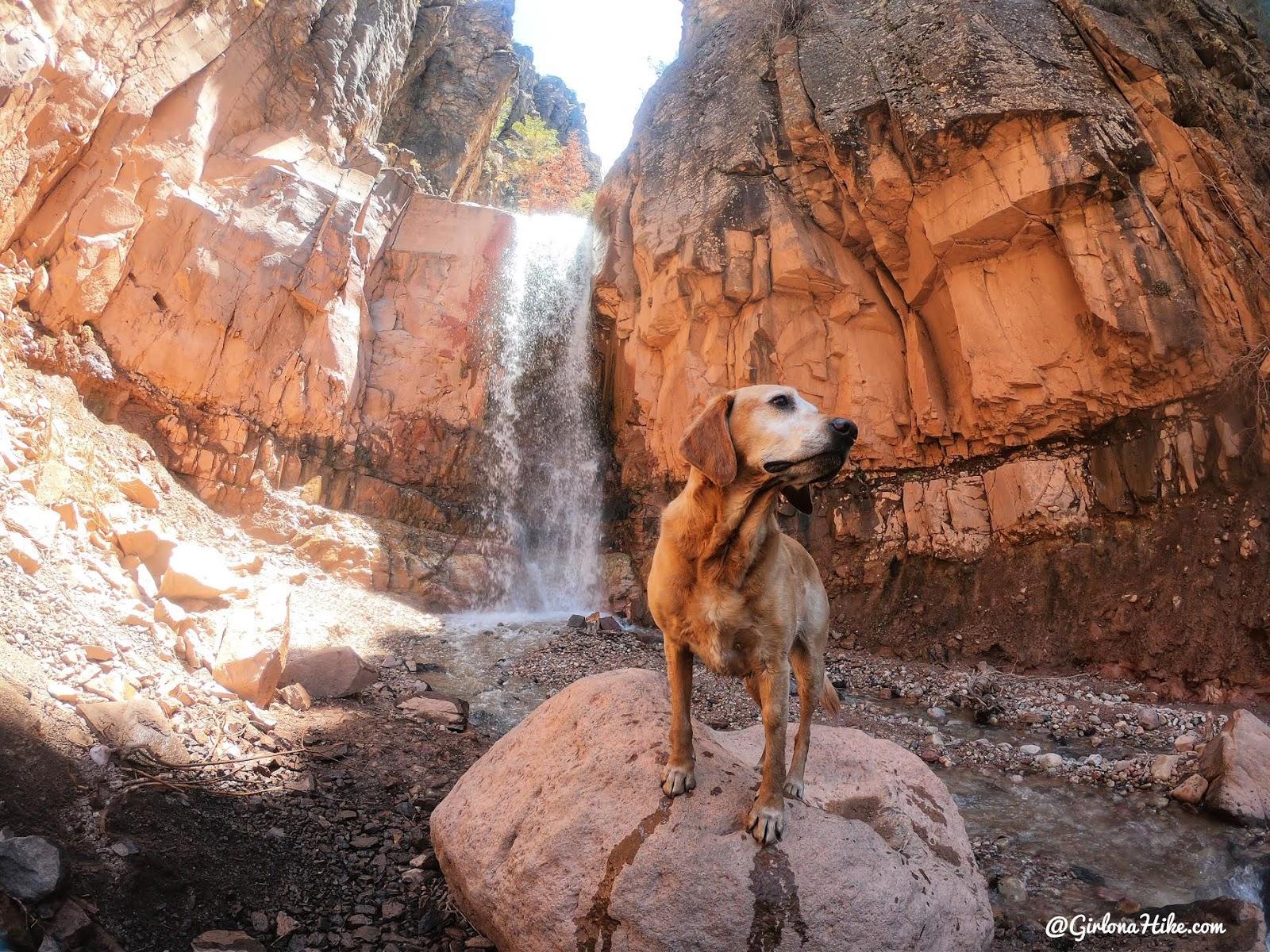 Hiking to the Hidden Haven Waterfall, Parowan, Utah waterfall, Brian Head waterfall, waterfalls in utah, waterfalls in southern utah, dog friendly utah waterfalls