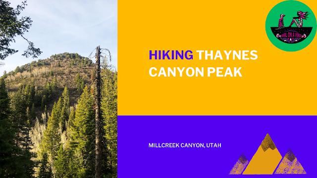 Hike Thaynes Canyon Peak, Millcreek canyon utah