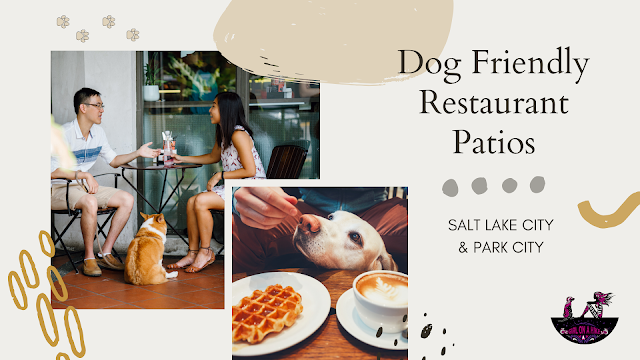 Dog Friendly Restaurant Patios in Salt Lake City and Park City