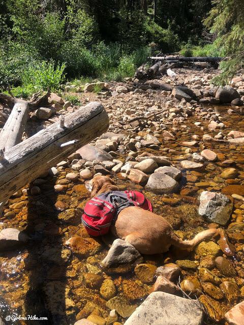 Backpacking to Abes Lake, Uintas