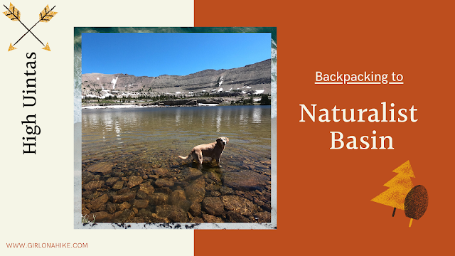 Backpacking to Naturalist Basin, Uintas