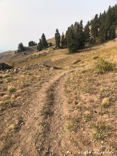Hiking to Shelly Baldy Peak, Tushar Mountains
