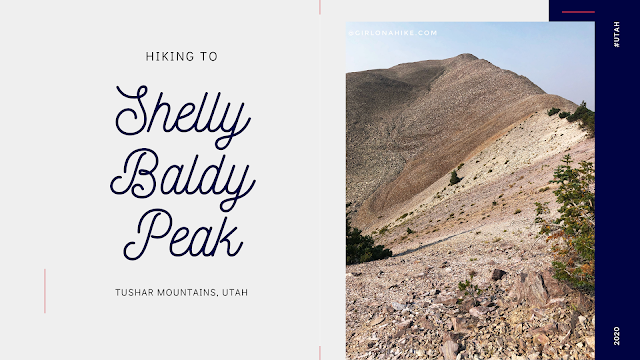 Hiking to Shelly Baldy Peak, Tushar Mountains