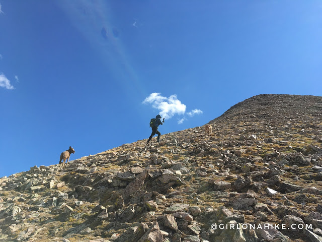 Hiking to Mt.Tomasaki, LaSal Mountains