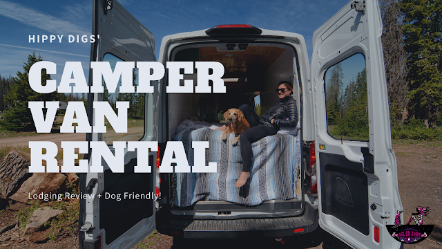 The Ultimate Guide - Dog Friendly Hikes in Escalante, Utah! Hippy Digs Camper Van Rental