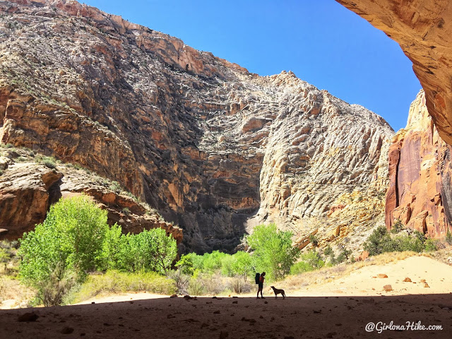 The Ultimate Guide - Dog Friendly Hikes in Escalante, Utah! Hike the Escalante River Trail