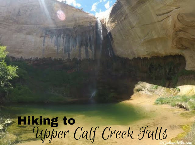 The Ultimate Guide - Dog Friendly Hikes in Escalante, Utah! Hike to Upper Calf Creek Falls