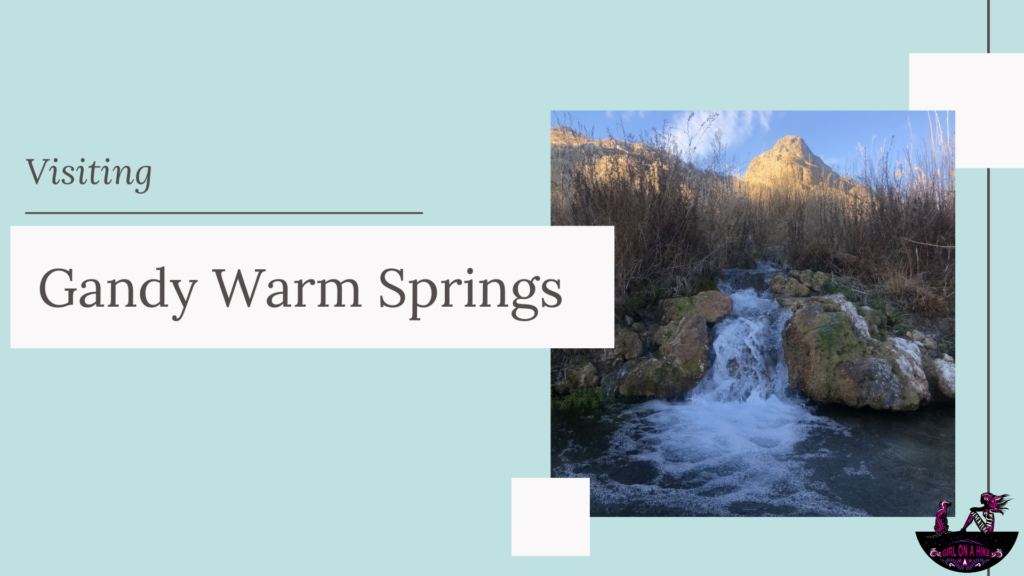Visiting Gandy Warm Springs, Utah