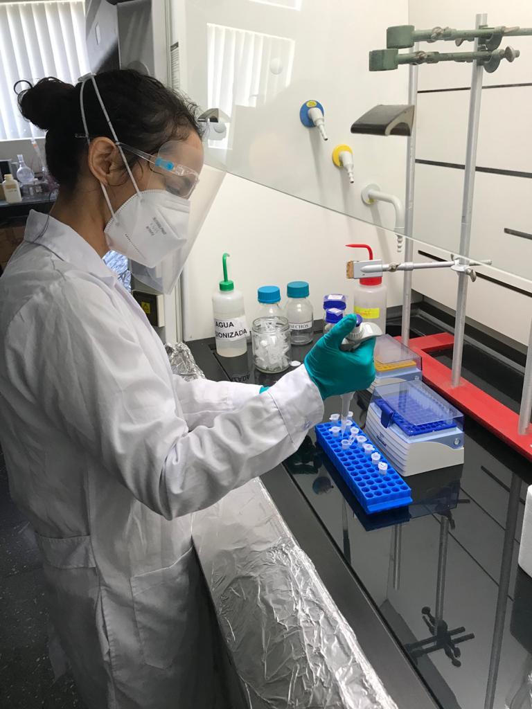 3 Equipo Tecnico MAGNET preparando muestras 1