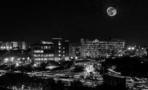 Full Moon – 満月!-