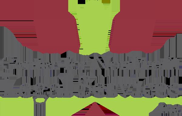 Center for NonProfit Legal Services