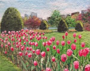 Tulips, Boston Public Gardens