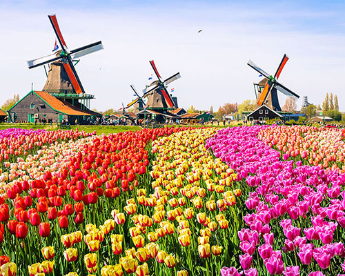 netherlands holland group travel