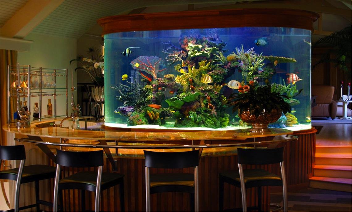 Sea Level Aquarium