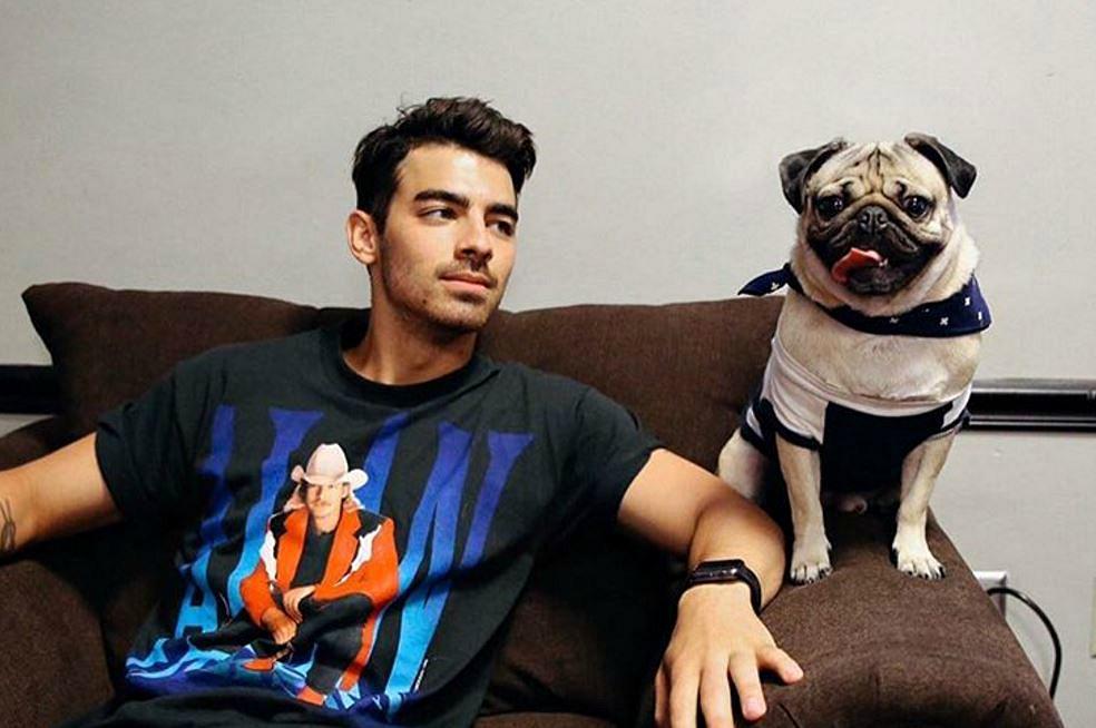 NJ Celebrities: National Dog Day