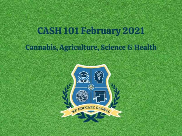 We Educate Global CASH 101 Feb 2021