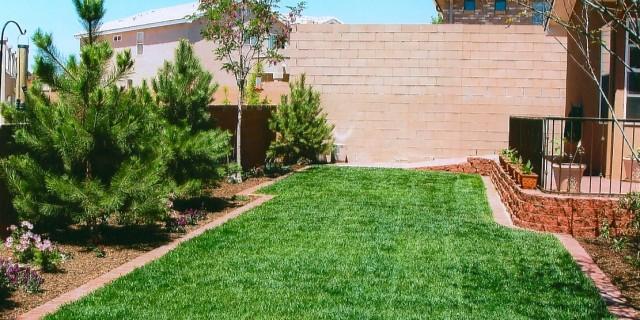 Professional Landscape Installation