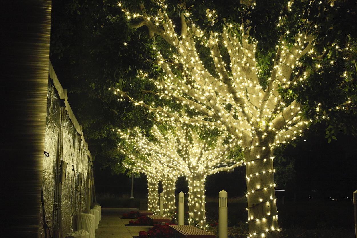 Christmas Light Installation Irvine 16