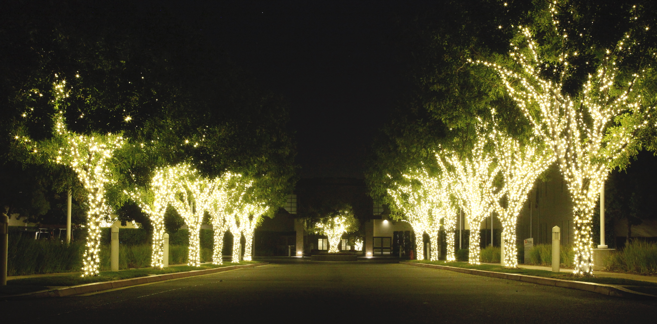 Commercial Christmas Light Installation Irvine 12