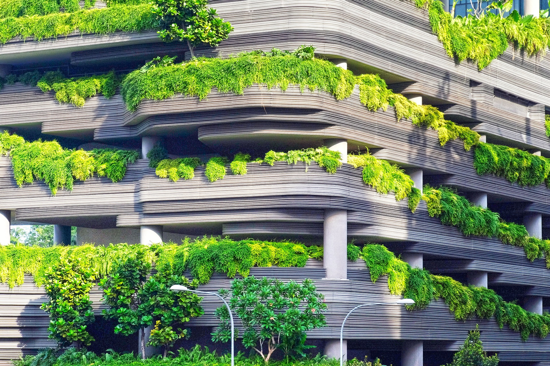 Plant material integrated with concrete structure symbolic of biomimetics