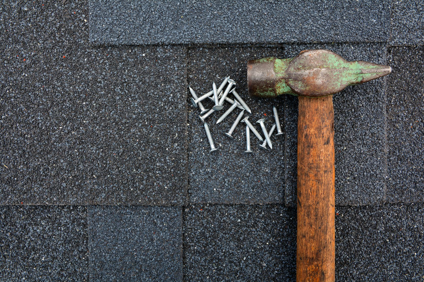 Shingle Roof Maintenance