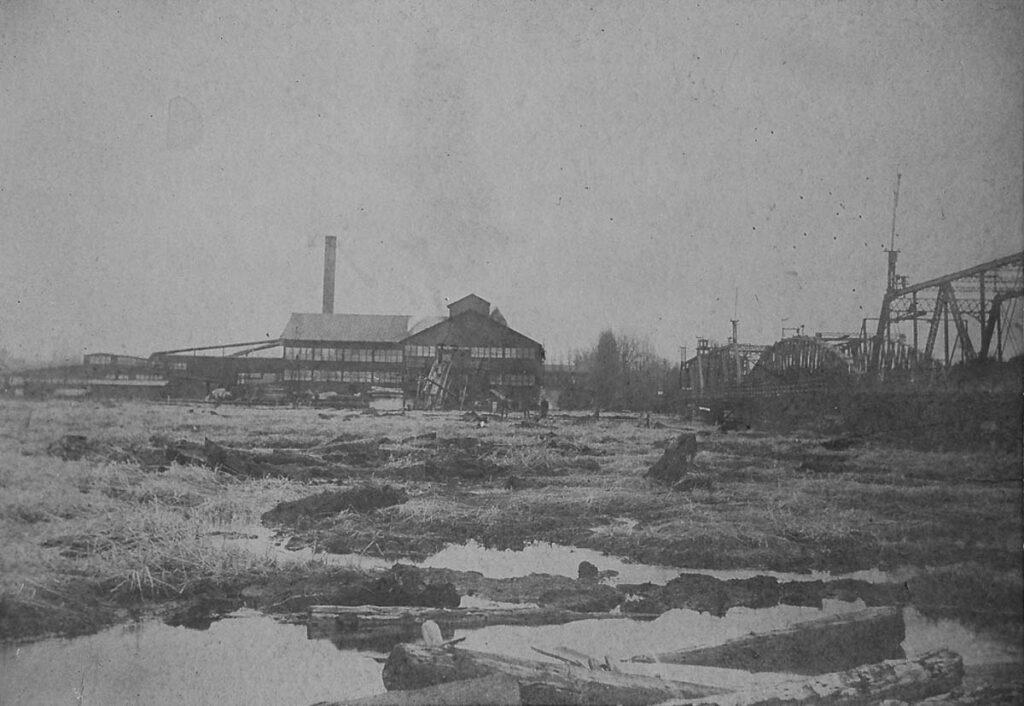 300 acres of Floating Bog 1906