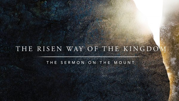 The Risen Way of Obedience Image