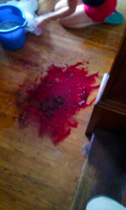 """Blood soaked floor where Erie County Sheriff's Dept., on the word of a """"snitch"""", raided the home and killed the dog of Corey Meer. Meer had no drugs and was not charged. Deputies left Meer the task of cleaning up the mess."""